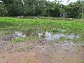 c68 KPW flooded