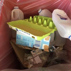 School Sustainability Plan - waste