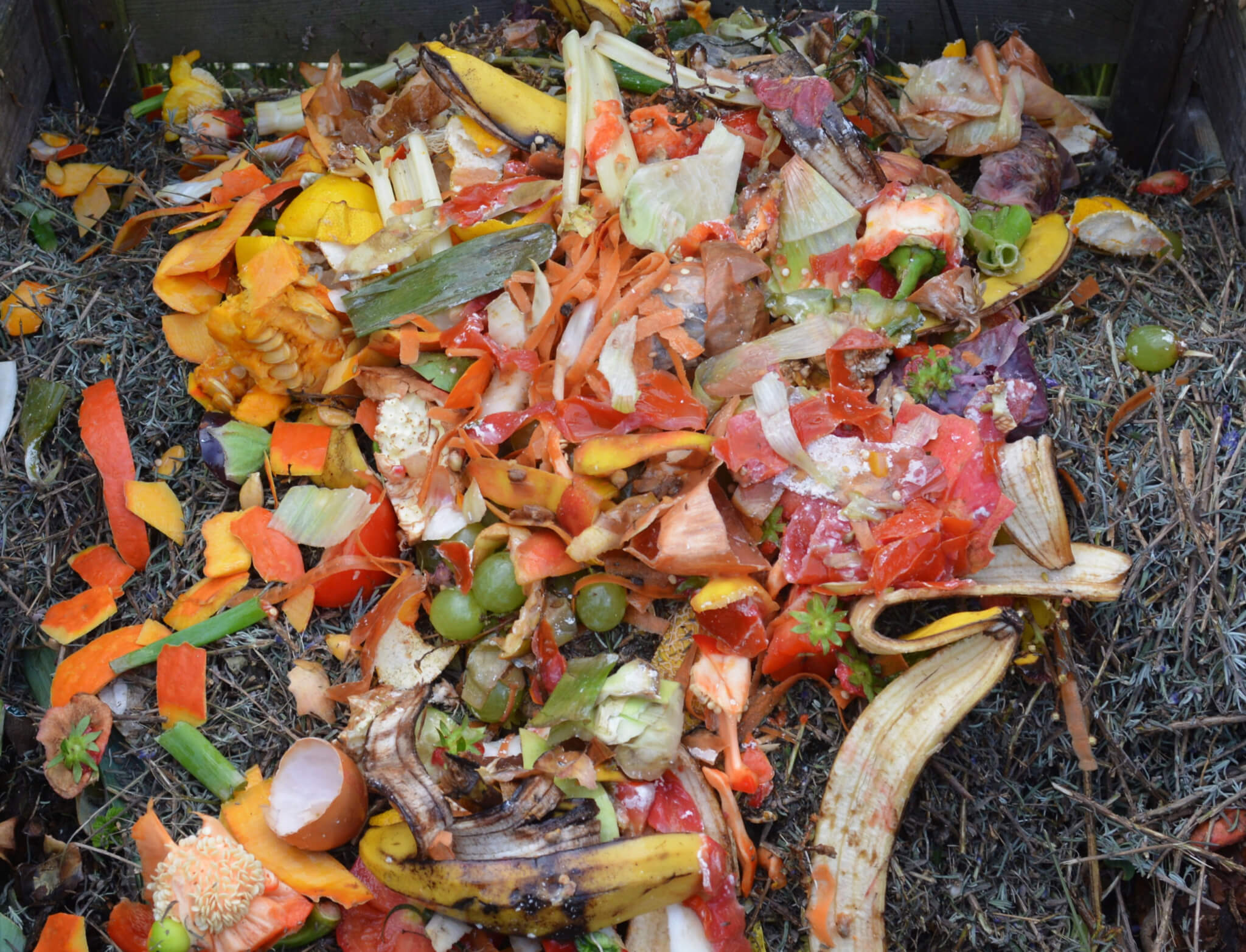 composting organic waste for a waste management plan (WMP) report