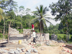 12. The progression of individual dwellings being built