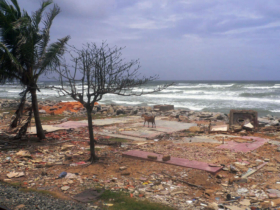 3. Example of the damage caused by the tsunami in this district