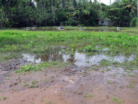 7. First we had to work to determine the flood levels of land chosen as the new site for dwellings