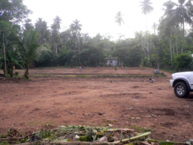 9. Next we cleared the land in preparation for building